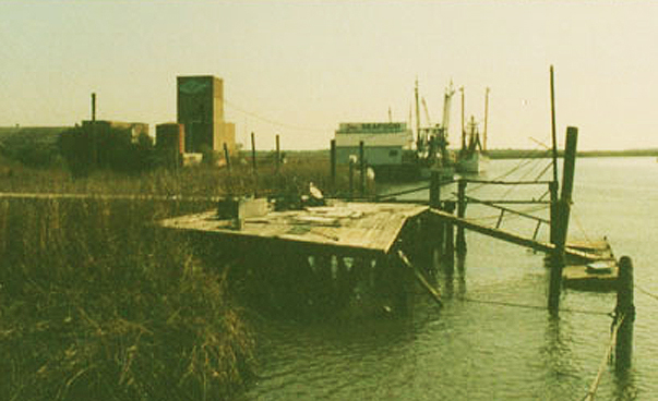 Photo from Captain Mike & Iris Scarbrough - old Lazaretto Marina docks,1992