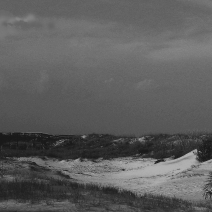 Tybee Dune Man